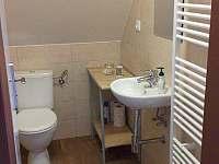 koupelna podkroví - chalupa k pronajmutí Frymburk - Svatonina Lhota