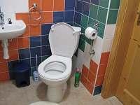 wc v přízemí - apartmán k pronajmutí Frymburk