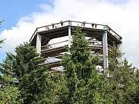 Stezka korunami stromu - pronájem chalupy Černá v Pošumaví - Muckov