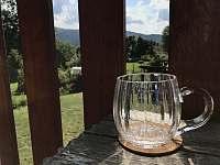 Apartmán 1 -Což takhle vypít sklenici piva při pohledu na šumavskou přírodu? :-) - pronájem Nová Pec - Pěkná