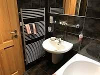 Apartmán 1 - Koupelna (umyvadlo) - Nová Pec - Pěkná