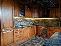 Apartmán 2 - plně vybavená kuchyň - k pronajmutí Nová Pec - Pěkná