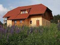 Apartmán na horách - okolí Františkova