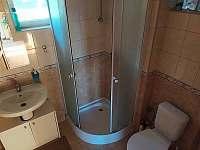 koupelna - chata k pronajmutí Horní Planá