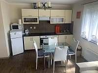 Apartmány Lipno - apartmán ubytování Milná - 2