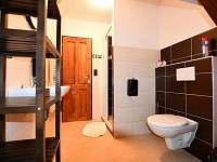 koupelny podkroví - chalupa k pronajmutí Chlum