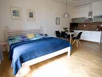 obytná kuchyň - apartmán k pronájmu Lipno nad Vltavou