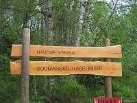 Soumarské rašelniště - Volary