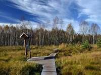 Soumarské rašelniště