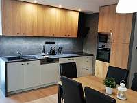 Kuchyň apartmánu 1. typu - k pronájmu Lipno nad Vltavou