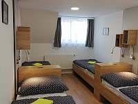 Ložnice se čtyřmi lůžky apartmánu 1. typu - ubytování Lipno nad Vltavou