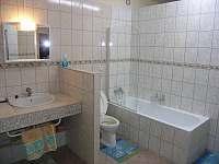 Apartmány Mirka dolní APT koupelna - k pronajmutí Lipno nad Vltavou