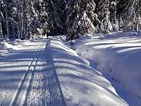 Chalupa v Pěkné - běžecká stopa podél Schwarzenberského plavebního kanálu -