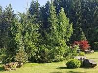 Rozlehlá zahrada u domu - Přední Výtoň