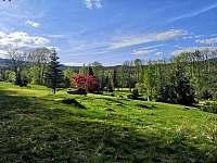 Zahrada - pronájem chaty Přední Výtoň