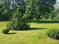 Zahrada u domu - Přední Výtoň