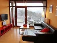 Lipno nad Vltavou - apartmán k pronajmutí - 24