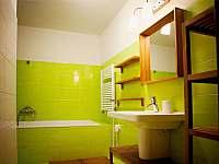 LipnoApartments - apartmán k pronajmutí - 8