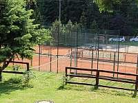 volejbalové hřiště - chalupa k pronájmu Železná Ruda