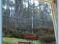 pohled z dřevěného pokoje do lesa