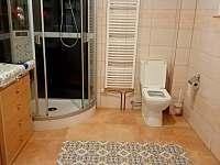 bezbariérová koupelna-přízemí včetně WC, sprch. koutem, umyvadlem a přeb. pultem - chalupa k pronájmu Lazny