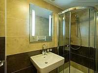 Koupelna - pronájem apartmánu Nová Pec - Nové Chalupy