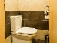 WC - apartmán k pronajmutí Nová Pec - Nové Chalupy