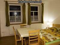 Třílůžková ložnice D - pronájem apartmánu České Žleby