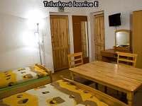 Třílůžková ložnice E - České Žleby