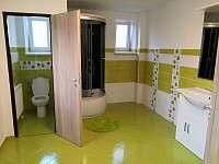 Apartmán 1 koupelna - k pronájmu Stříbrné Hory