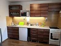 Apartmán 1 kuchyňka - ubytování Stříbrné Hory