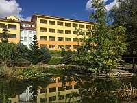 Rodinný apartmán ve wellness hotelu - apartmán - 38 Frymburk