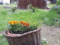 Hájovna u Werichovy chaty - chalupa - 23 Velhartice