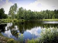 Rybník vzdálený cca 200metrů