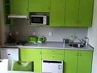 ubytování Lipno nad Vltavou Apartmán na horách