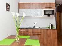 Apartman Javor - apartmán k pronajmutí - 11 Zwiesel