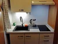 Kuchyň apartmánu 277 - ubytování Mitterdorf