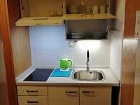 Kuchyň v apartmánu 276 - ubytování Mitterdorf