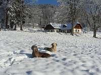 Řetenice - penzion na horách - 24