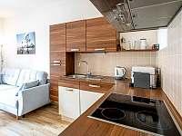 Kuchyňský kout - apartmán ubytování Lipno nad Vltavou
