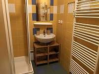 Apartmán k pronájmu - apartmán ubytování Kvilda - 5