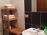 Apartmán 2 - koupelna - Stögrova Huť