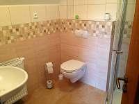 Koupelna - apartmán k pronajmutí Dlouhá Ves