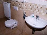 Koupelna - apartmán k pronájmu Dlouhá Ves