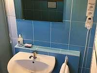 Koupelna - pronájem chaty Malšín