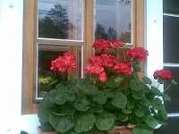 Letní okno