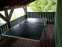 pingpong - stůl na stolní tenis