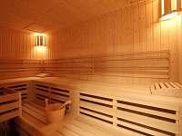 Sauna - apartmán k pronájmu Kvilda