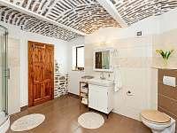 Dolní koupelna se sprchovým koutem a krásným klenbovým stropem - chalupa ubytování Želnava