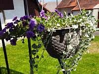 dvůr s květinami - Bukovník